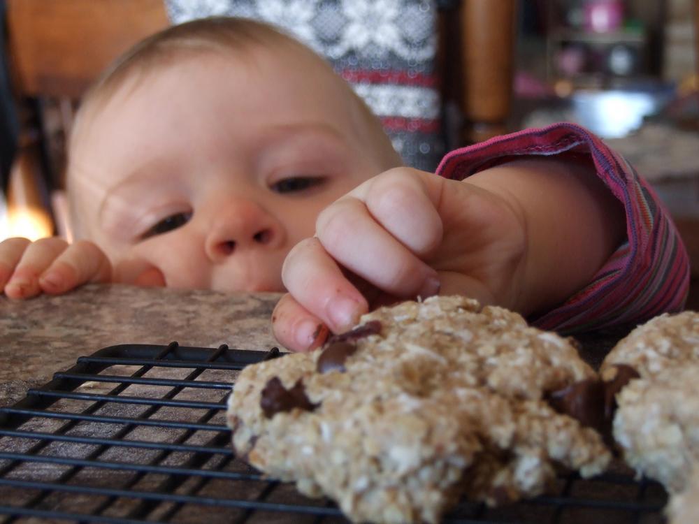 cuisine biscuits
