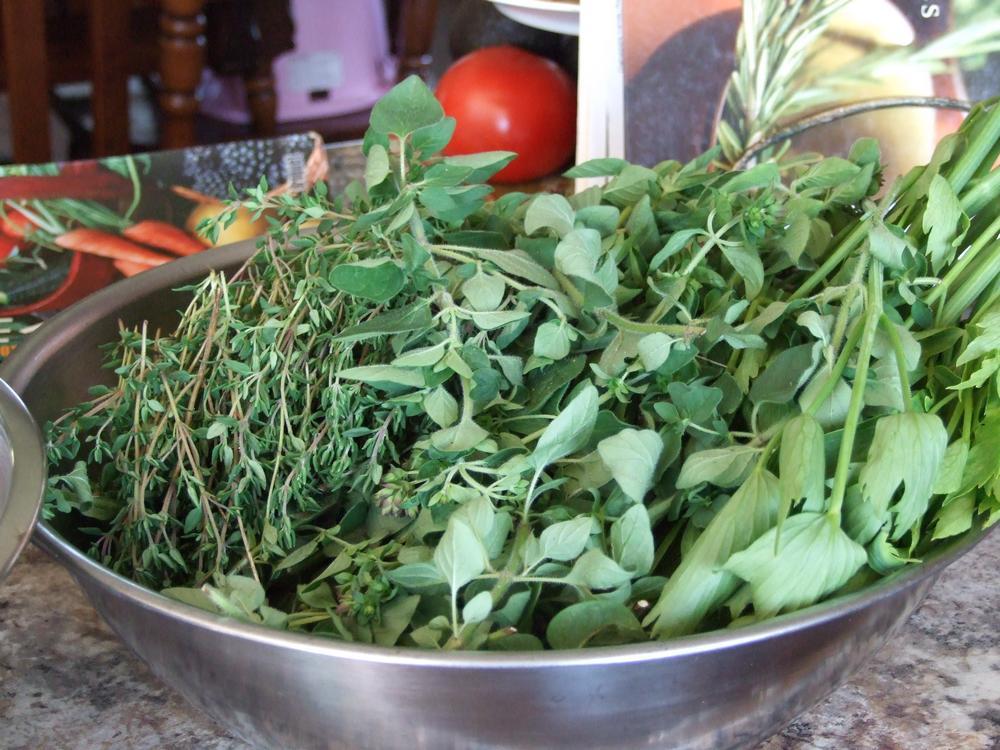 fines herbes, cuisine, jardinage, récoltes