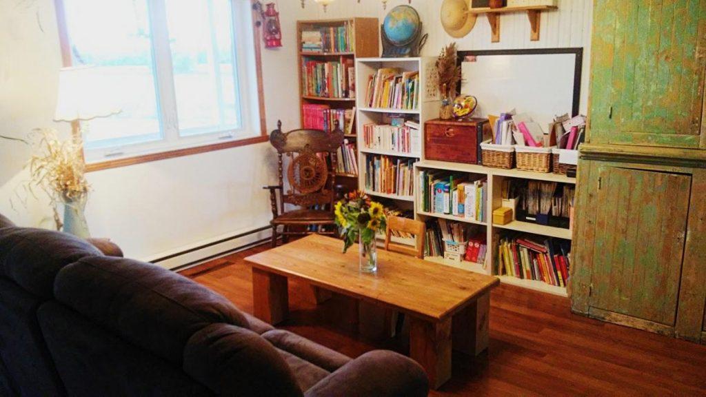 livres, bibliothèque, salon, simplicité