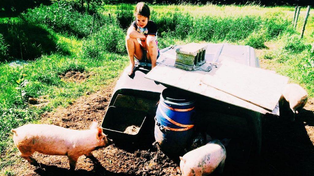 enfant élevage animaux fermette