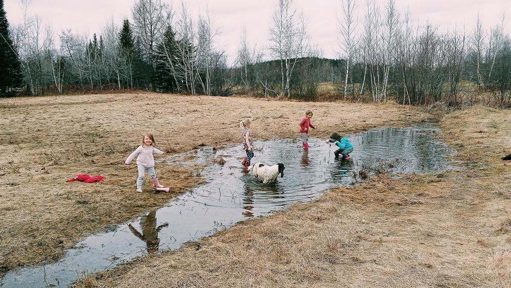 enfants-jouer-champs